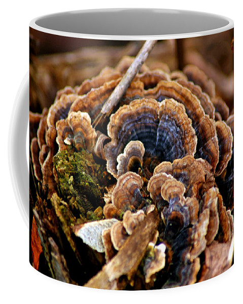 Chicago Coffee Mug featuring the photograph Michigan Fungus by LeeAnn McLaneGoetz McLaneGoetzStudioLLCcom
