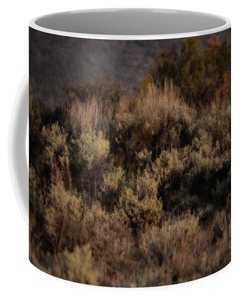 Sagebrush Coffee Mug featuring the photograph Midnight Sage Brush by Donna Greene