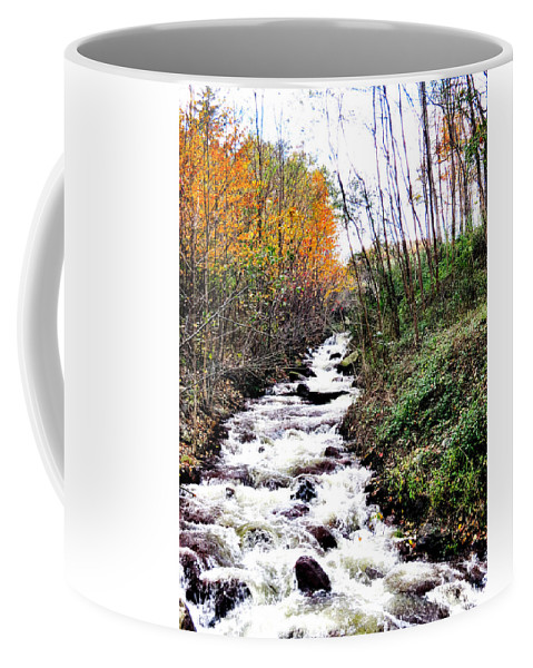 Fall Coffee Mug featuring the photograph Mile Long Rapids by Art Dingo