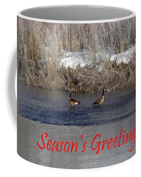 Christmas Coffee Mug featuring the photograph Mirrored Geese Season Greetings by DeeLon Merritt