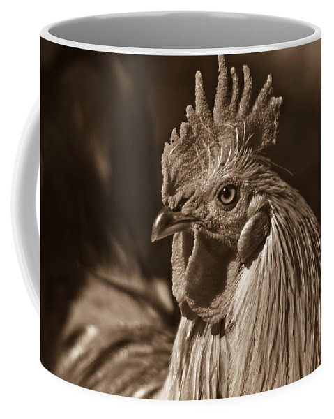Mister Coffee Mug featuring the photograph Mister Rooster From The Barnyard by Douglas Barnett