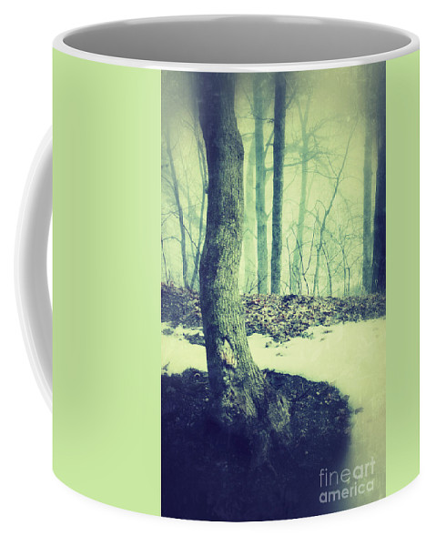 Rural Coffee Mug featuring the photograph Misty Winter Woods by Jill Battaglia