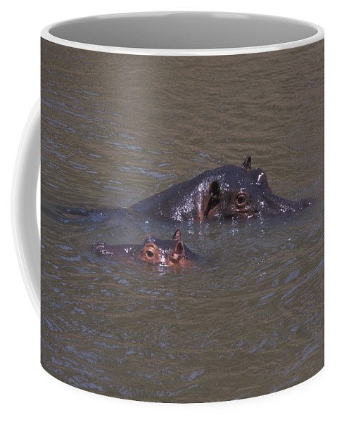 Bronstein Coffee Mug featuring the photograph Mom And Baby In The Mara River by Sandra Bronstein