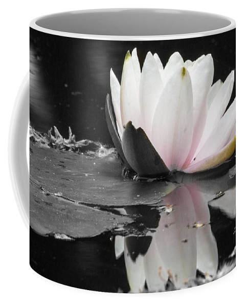 Waterlily Coffee Mug featuring the photograph Monochrome Lily by Darleen Stry