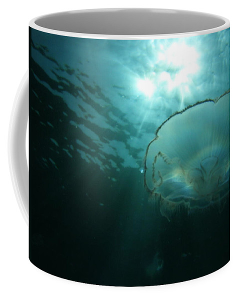 Coffee Mug featuring the photograph Moon Jelly Aurora by Kimberly Mohlenhoff