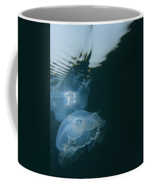 Ocean Water Sunlight Sea Blue Pink Jellyfish Wildlife Nature Coffee Mug featuring the photograph Moon Jelly Ripples by Kimberly Mohlenhoff