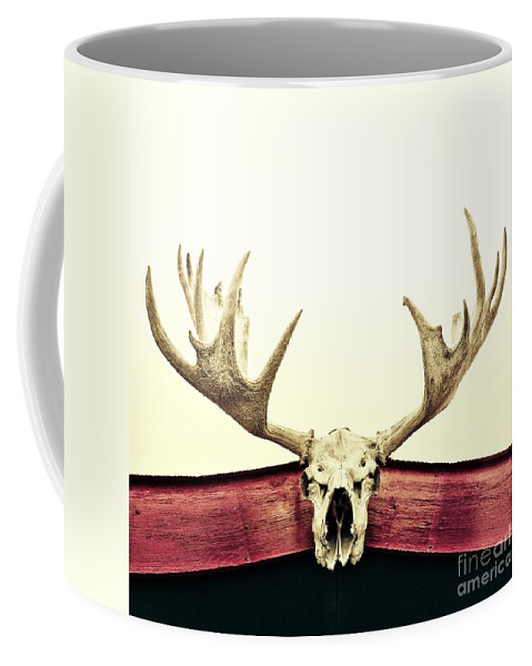 Moose Coffee Mug featuring the photograph Moose Trophy by Priska Wettstein