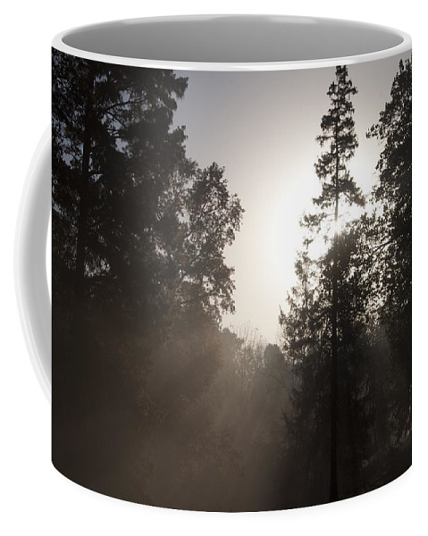 Morning At Valley Forge Coffee Mug featuring the photograph Morning At Valley Forge by Bill Cannon