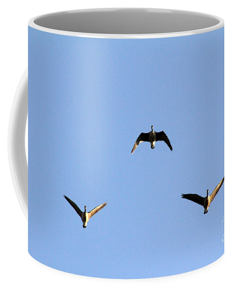 Poster Coffee Mug featuring the photograph Morning Formation by Alycia Christine