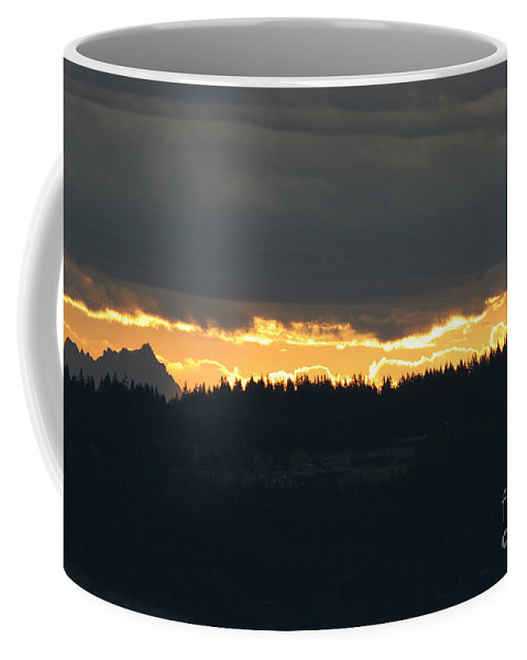 Morning Coffee Mug featuring the photograph Morning Gold by Tap On Photo