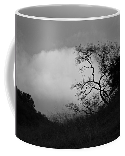 Mountains Coffee Mug featuring the photograph Morning Hike by Diana Hatcher
