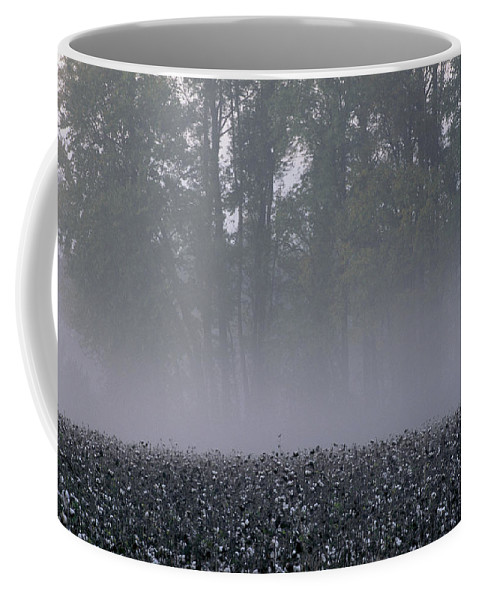 Fields Coffee Mug featuring the photograph Morning Mist Over A North Carolina by Medford Taylor