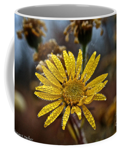 Flower Coffee Mug featuring the photograph Morning Showers by Susan Herber