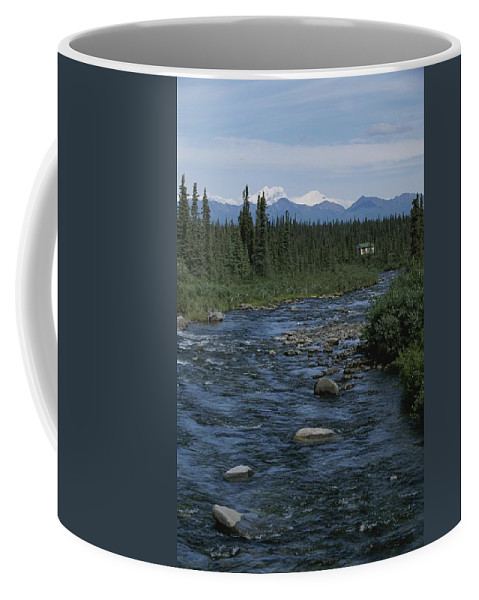 North America Coffee Mug featuring the photograph Mountain Stream With Cabin In Evergreen by Rich Reid