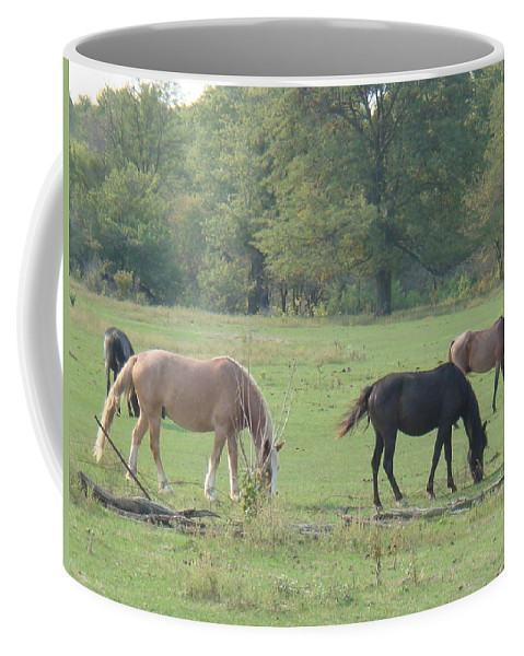 Nature Coffee Mug featuring the photograph Mowing The Lawn by Bonfire Photography