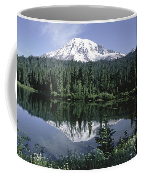 Sandra Bronstein Coffee Mug featuring the photograph Mt. Ranier Reflection by Sandra Bronstein