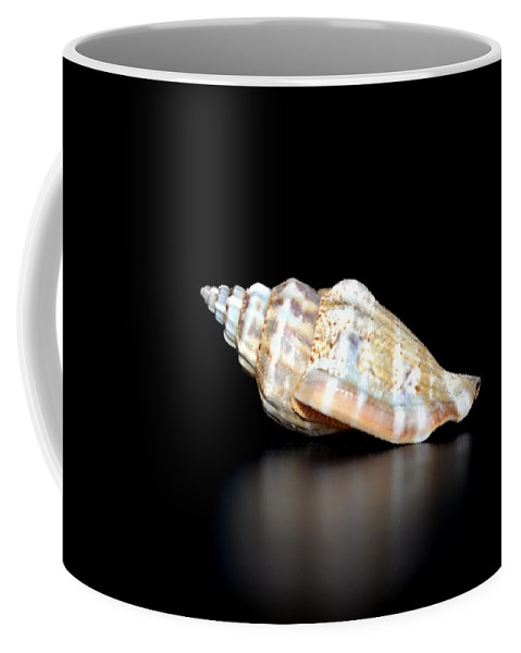Multicolor Coffee Mug featuring the photograph Multicolor Reflections by Maria Urso