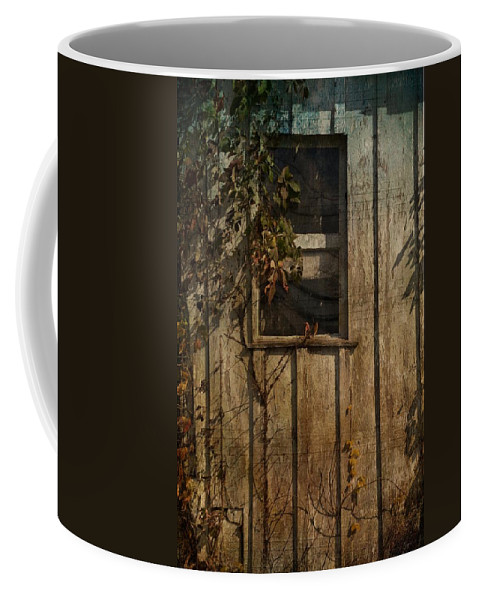 Window Coffee Mug featuring the photograph Musical Window by Trish Tritz