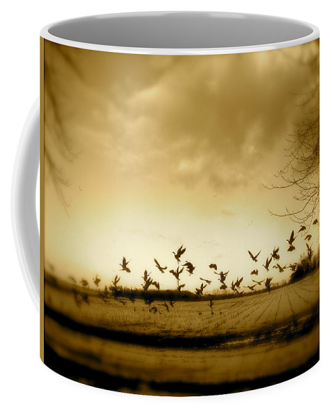 Landscape Coffee Mug featuring the photograph My Back Yard by Arthur Barnes
