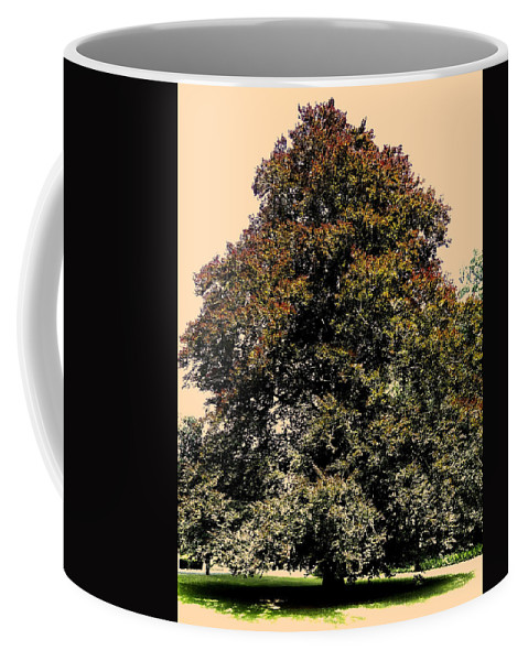 Sonne Coffee Mug featuring the photograph My Friend The Tree by Juergen Weiss