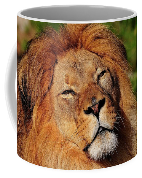 African Coffee Mug featuring the photograph My Funny Face by Bill Dodsworth