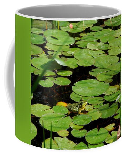 Usa Coffee Mug featuring the photograph My Pad Or Yours by LeeAnn McLaneGoetz McLaneGoetzStudioLLCcom