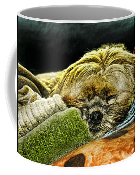 Dog Coffee Mug featuring the photograph Nap Time by Adam Vance