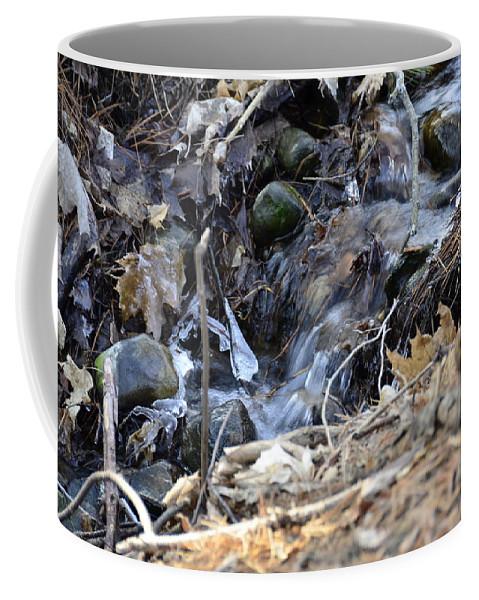 Usa Coffee Mug featuring the photograph Natures Ice Maker by LeeAnn McLaneGoetz McLaneGoetzStudioLLCcom