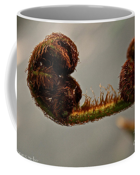 Plant Coffee Mug featuring the photograph Nature's Red Carpet Unfurling by Susan Herber