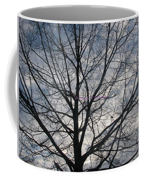 2011 Morning Coffee Mug featuring the photograph New Year's Morning by Sonali Gangane