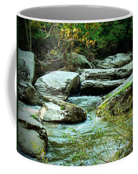 Creek Coffee Mug featuring the photograph Night Encroaches by Mother Nature