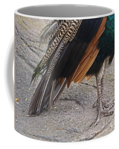 Peahen Coffee Mug featuring the photograph Her Kind Of Beauty by Ann Horn