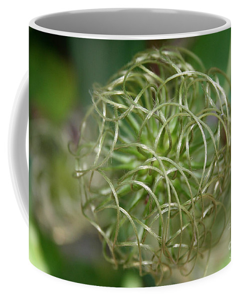 Outdoors Coffee Mug featuring the photograph O So Round by Susan Herber