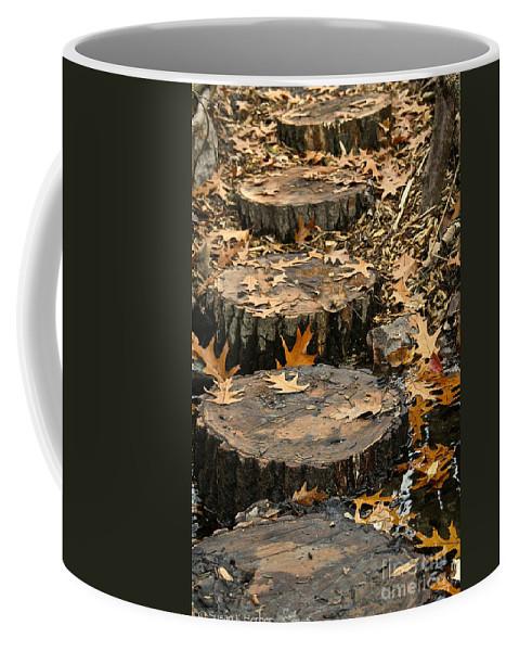 Outdoors Coffee Mug featuring the photograph Oak Creek Steps by Susan Herber