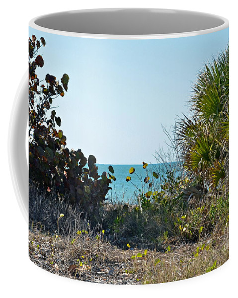 Ocean Coffee Mug featuring the photograph Ocean View by Carol Bradley