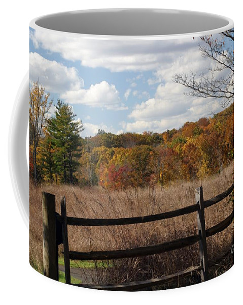 Landscape Coffee Mug featuring the photograph Off The Beaten Path by Living Color Photography Lorraine Lynch