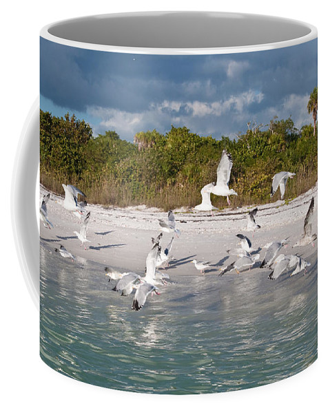 Seagulls Coffee Mug featuring the photograph Off The Bow by Christine Stonebridge