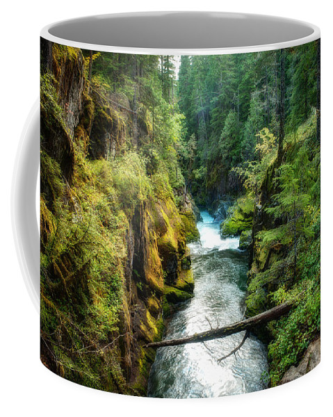 Autumn Coffee Mug featuring the photograph Ohanapecosh River On Mount Rainier by Rich Leighton