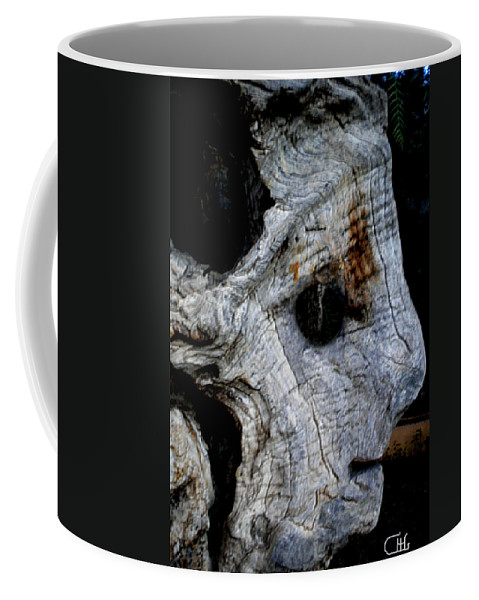 Colette Coffee Mug featuring the photograph Old Ancient Olive Tree In Spain by Colette V Hera Guggenheim