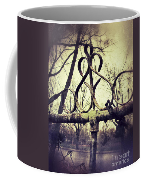 Fence Coffee Mug featuring the photograph Old Fence Detail by Jill Battaglia