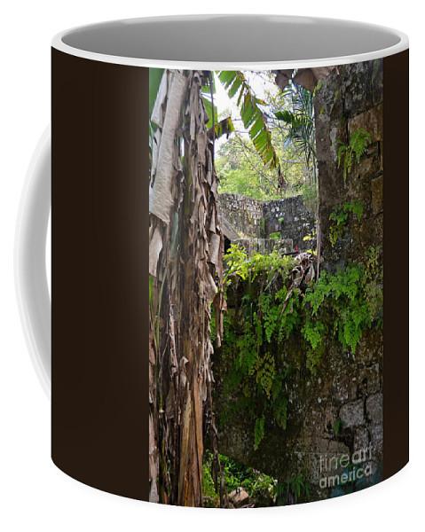 Jamaica Coffee Mug featuring the photograph Old Jamaican Sugar Mill by Carol Bradley