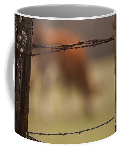 Fences Coffee Mug featuring the photograph Old Post Fence by Kim Henderson