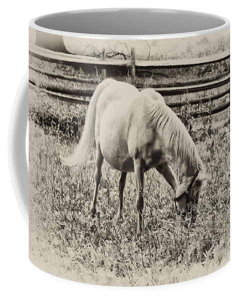 Horse Coffee Mug featuring the photograph Old Trigger by Bill Cannon