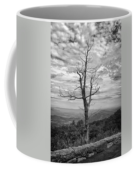Forest Coffee Mug featuring the photograph On Top Of The World by Guy Whiteley