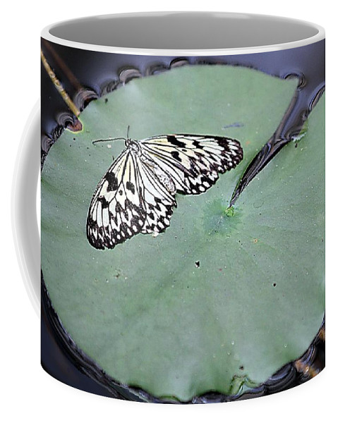 Butterfly Coffee Mug featuring the photograph Once Upon A Lily by Elizabeth Winter