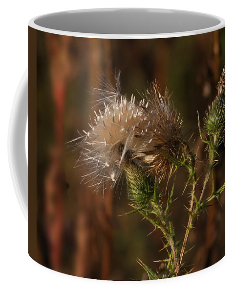 Nature Coffee Mug featuring the photograph One Man's Weed by Susan Capuano