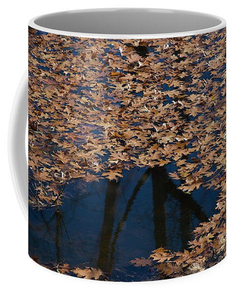Creek Coffee Mug featuring the photograph Open Water by Joseph Yarbrough