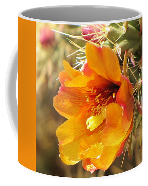 Cactus Flower Coffee Mug featuring the photograph Orange And Yellow Cactus Flower by Michelle Cassella