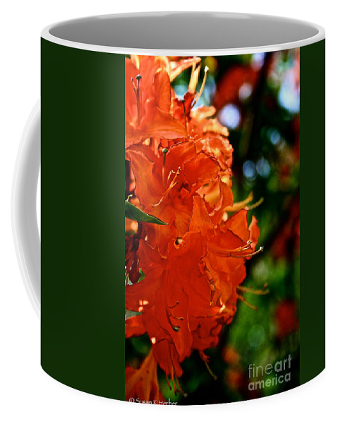 Plant Coffee Mug featuring the photograph Orange by Susan Herber