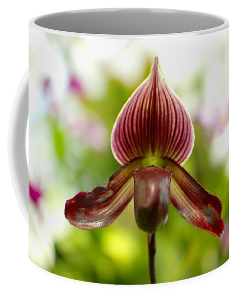 Purple Coffee Mug featuring the photograph Orchid IIi by Floyd Menezes